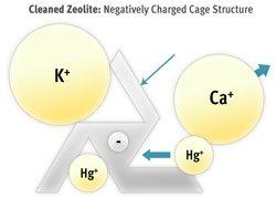 Zeolite Cage